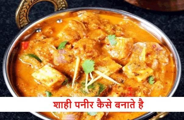 Shahi Paneer Recipe in Hindi  शाही पनीर कैसे बनाते हैं